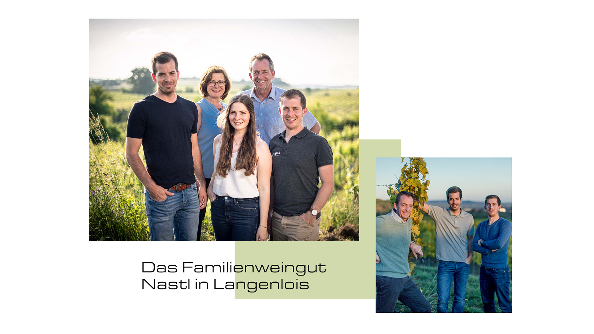 weingut_nastl_weinwerbeagentur_niederösterreich_webshop_website_social_media